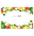 Mixed Tropical Fruits Frame Border vector image vector image