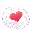 pink heart in women contour hands for your design vector image vector image