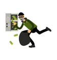 professional masked burglar character stealing vector image