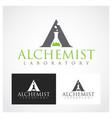 alchemist symbol vector image vector image