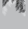 black and white palm leaf background vector image vector image