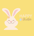 easter rabbit and easter text background yellow vector image