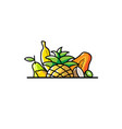 tropical fruits logo vector image