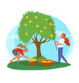 young girls picking yellow apples image vector image vector image