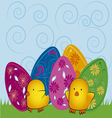 easter eggs with chicks vector image vector image