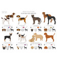 hunting dogs collection isolated on white flat vector image