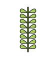 leafs plant wreath icon vector image vector image