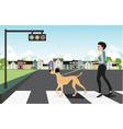 Leash dog across the street vector image vector image