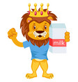 lion with milk on white background vector image vector image