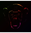 Monkey silhouette of gradient lights vector image vector image