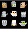 owls on a black background vector image vector image