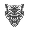 angry wolf head in monochrome style design vector image vector image