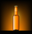 Brown bottle of beer vector image vector image