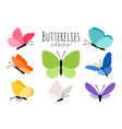 colored spring butterflies vector image