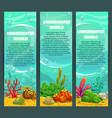 cute bright ocean underwater vertical banners set vector image