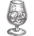 hand drawn cocktail sketch alcoholic drinks in vector image vector image