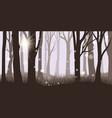 misty forest background vector image vector image