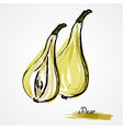 pear fruits vector image vector image