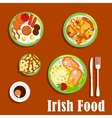 Traditional irish cuisine dishes set vector image vector image