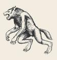 werewolf sketch vector image vector image