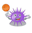with basketball sea urchin drawing engraving ink vector image