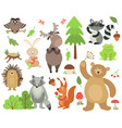 cartoon forest animals elk owl hare raccoon vector image vector image