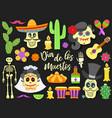 dia de los muertos day dead traditional vector image