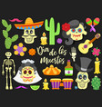 dia de los muertos day of the dead traditional vector image
