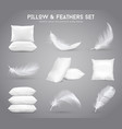 feathers and pillows realistic set vector image vector image