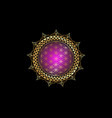 flower life yantra mandala gold lotus flower vector image vector image
