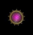 flower life yantra mandala gold lotus vector image vector image
