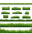 green grass panorama white background vector image vector image
