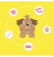 Little glamour tan Shih Tzu dog stuff Dash line vector image vector image