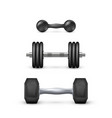 set realistic dumbbells equipment for vector image vector image