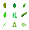 small leaf icons set cartoon style vector image vector image