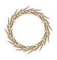wreath yellow indiangrass sorghastrum nutans vector image