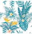exotic composition flowers and plants blue color vector image