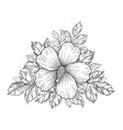 hand drawn floral composition with hibiscus vector image vector image