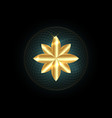 seed life symbol sacred geometry gold mandala vector image vector image