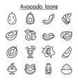 avocado icon set in thin line style vector image vector image
