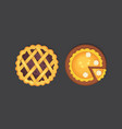 berry and pumpkin pie icon isolated vector image