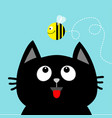 black cat head looking up to flying honey bee vector image vector image