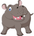 cartoon funny hippo isolated on white background vector image vector image