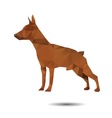 Dog abstract vector image vector image