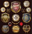 golden premium quality vintage banner collection vector image