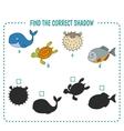 marine fish vector image vector image