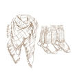 Sketch of warm clothes vector image vector image