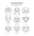 top dog breeds hunting dogs set pet outline vector image