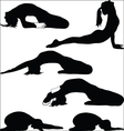 Yoga - a variety of exercises vector image vector image