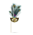 concept peacock feather on isolated background vector image vector image